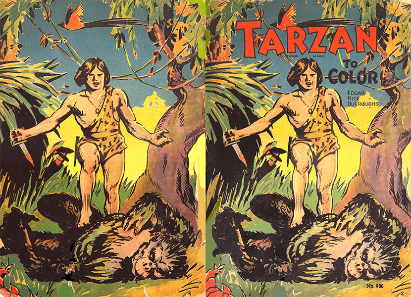 Tarzan to Color