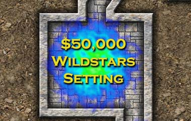 Wild Stars Role Playing Game